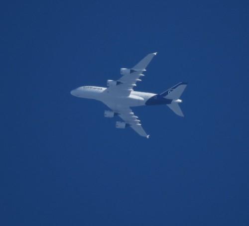 Lufthansa17