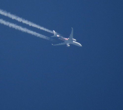 MalaysiaAirlines06