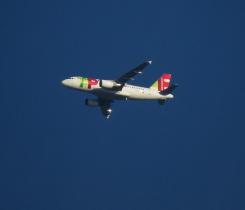 TAPPortugal05