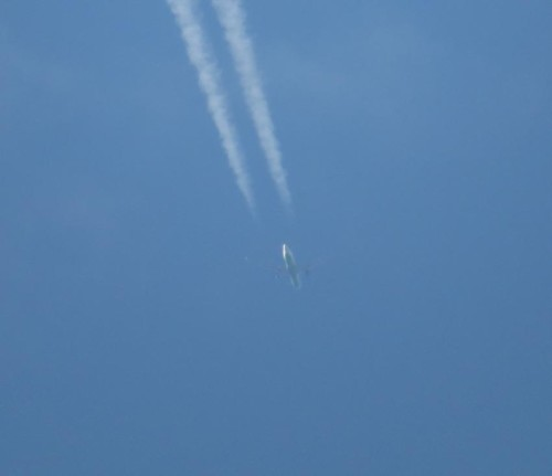 UzbekistanAirlines01