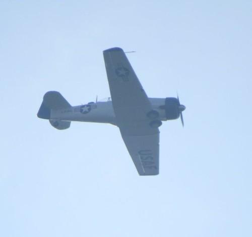 SmallAircraft - D-FUKK-08