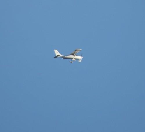 SmallAircraft - D-MFJS-01