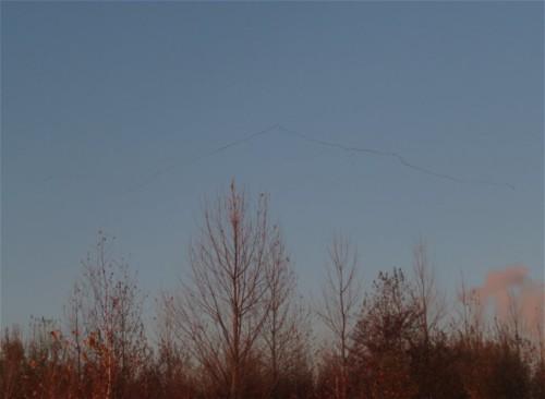 Crane014