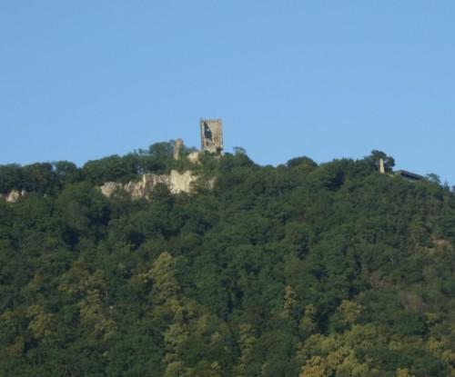 BurgruineDrachenfels004-2007