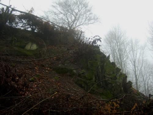 BurgruineRosenau005-2008