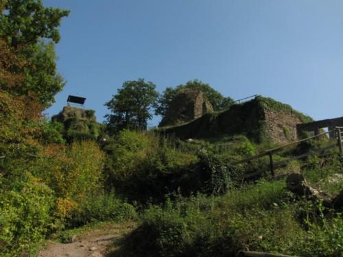 BurgAre005-2009