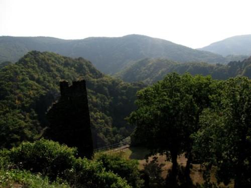 BurgAre017-2009