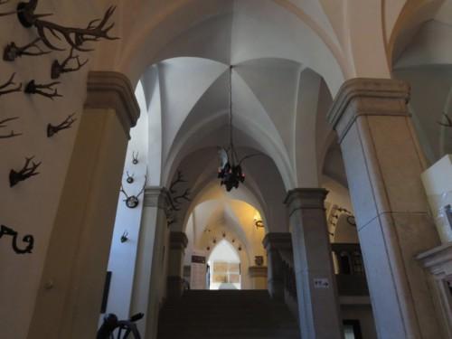 BurgReichenstein034-2018