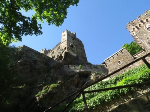 BurgRheinstein005-2018
