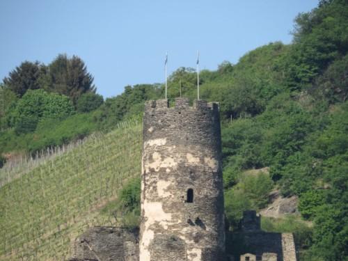 BurgruineFürstenberg006-2018