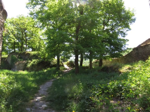 RuineStahlenberg008-2018