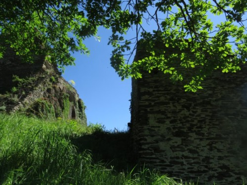 RuineStahlenberg017-2018