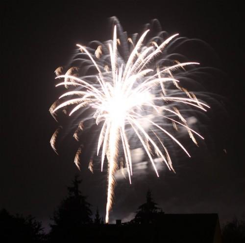 Firework015