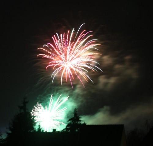 Firework019