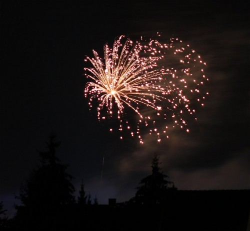 Firework020