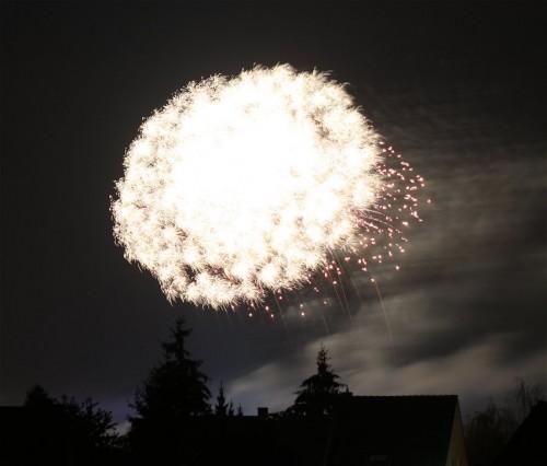 Firework021