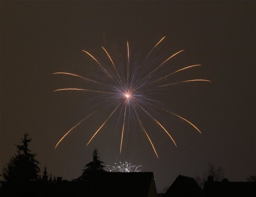 Firework031