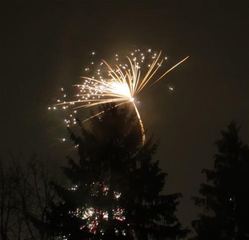 Firework113