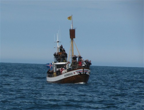 Others - Whale watching - Iceland,North Sailing - Knörrinn