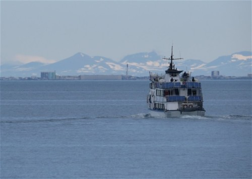 Others - Whale watching - Iceland,Special Tours - Andrea01